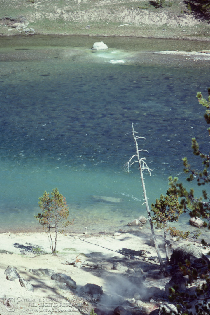 Hot Springs IN the Firehole River: Yellowstone National Park