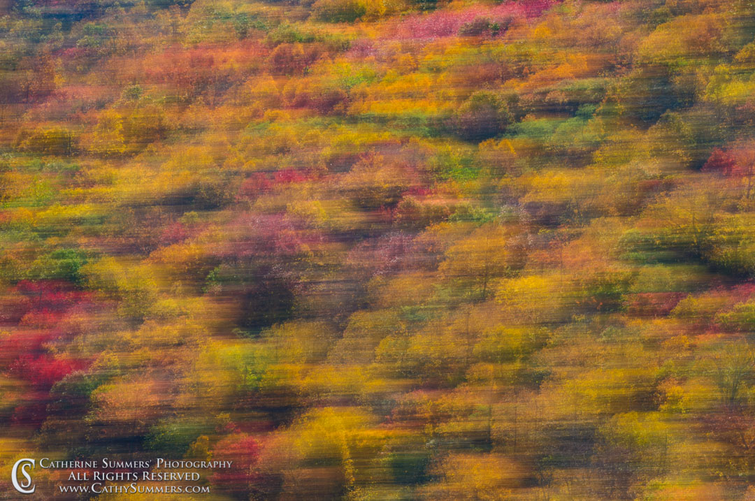 20111016_042: Fall Colors - Panning Blur #1, Shenandoah National Park