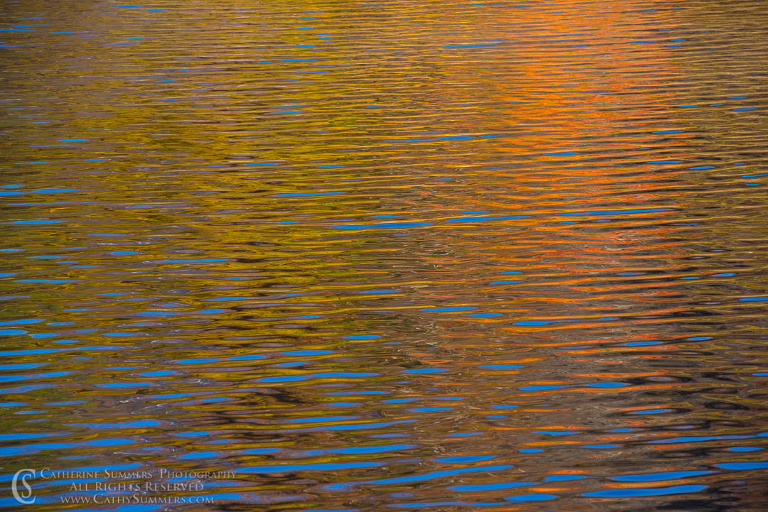 20161105_132: reflection, autumn, C&O Canal, Widewater
