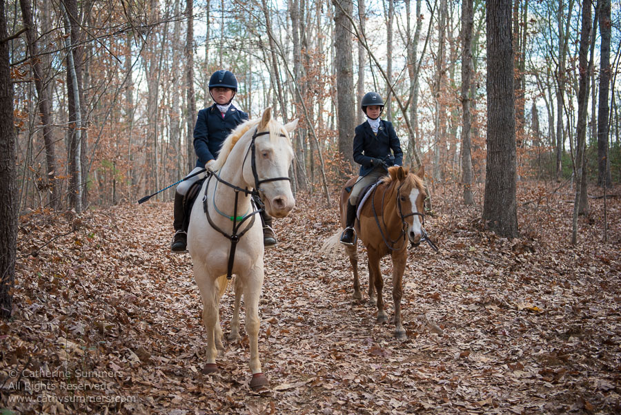 fox hunting, FHC, Farmington Hunt