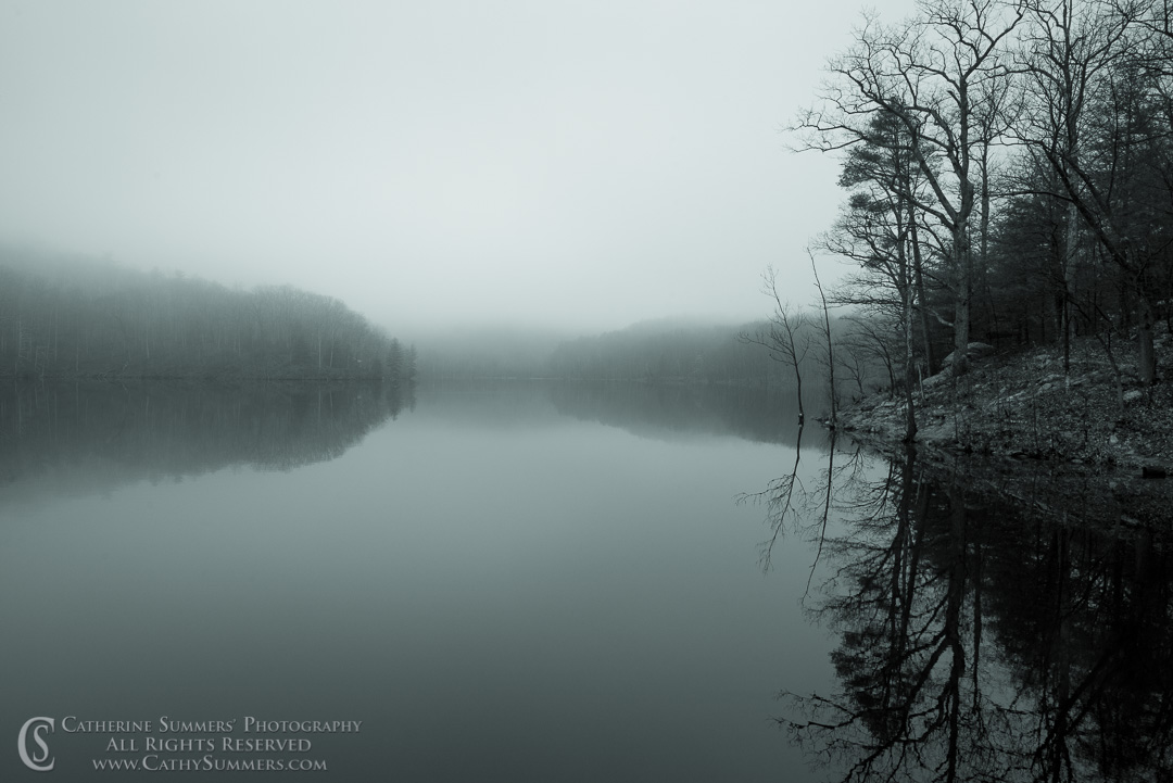 20161226_001_BW: reflection, horizontal, trees, fog, Sugar Hollow