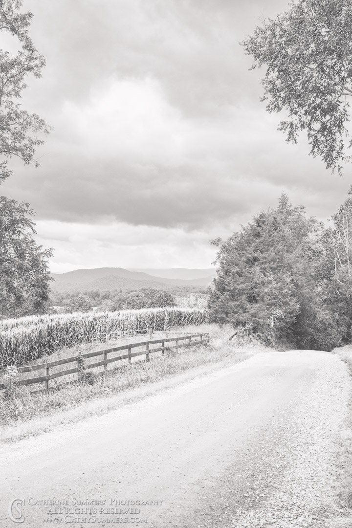 20180822_004_BW: clouds, fence, summer, Blue Ridge Mountains, gravel road, corn field