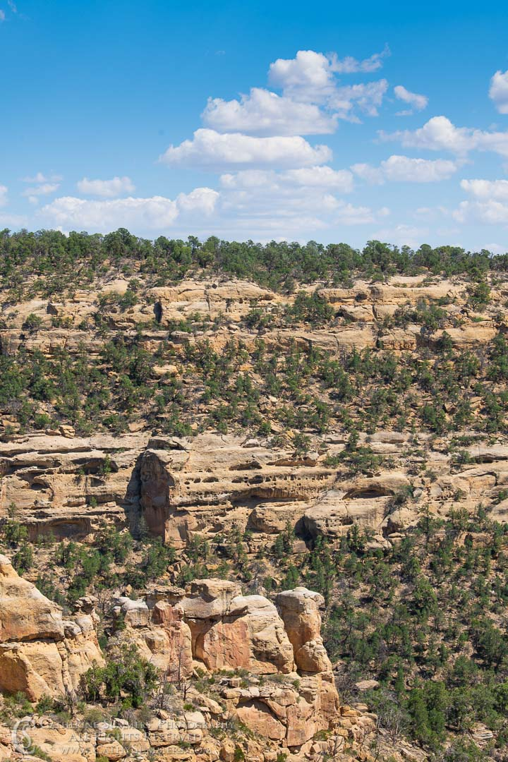 View of Wetherill Mesa from Step House: Mesa Verde National Park