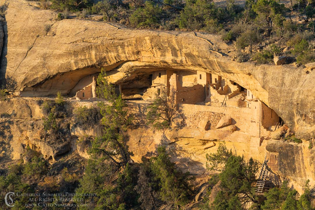 Balcony House Cliff Dwelling in Early Morning Light: Mesa Verde National Park