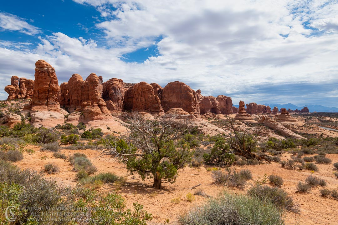 Fiery Furnace: Arches National Park