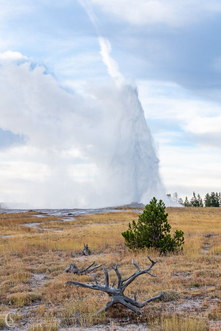 20180923_016: geyser, Yellowstone National Park, Old Faithful