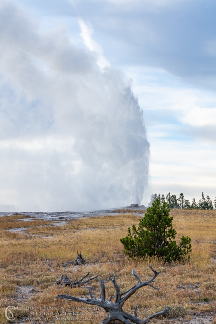 20180923_020: geyser, Yellowstone National Park, Old Faithful