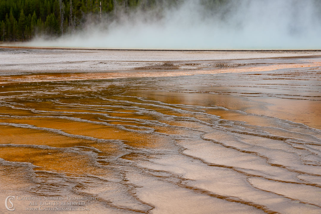 20180923_071: Yellowstone National Park