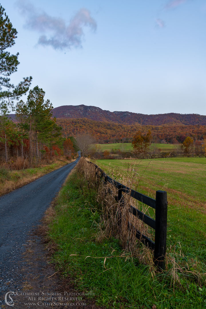 Gravel Road Leading to Old Rag Mountain Before Sunrise on an Autumn Morning: Madison, Virginia