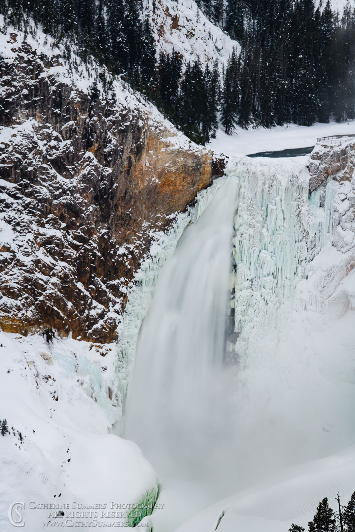 Lower Falls of the Yellowstone River from Lookout Point
