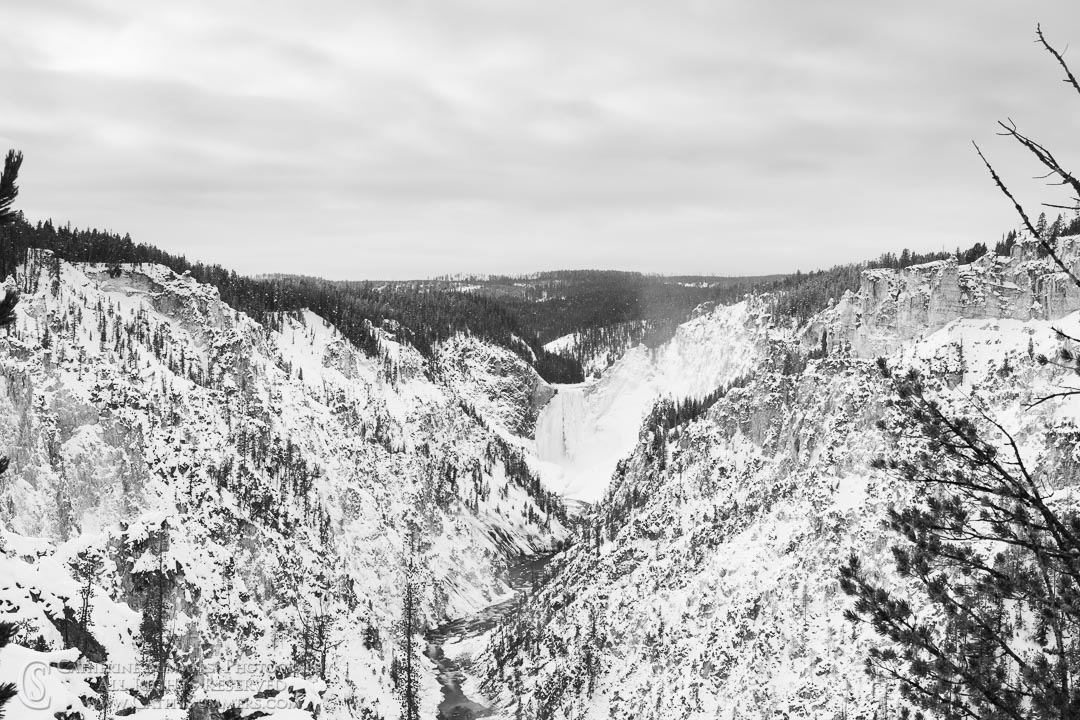 20191229_171: horizontal, waterfall, Winter, snow, Grand Canyon of the Yellowstone, Yellowstone River, Lower Falls