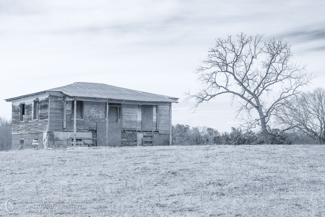 20200229_265: horizontal, trees, Winter, field, house, abandonded, grayscale