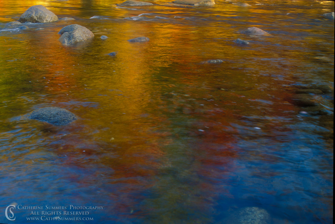 91_1264: Swift River Reflections #1