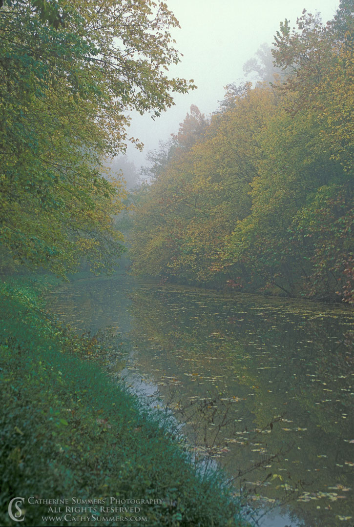 Autumn Morning on the C&O Canal: C&O Canal National Historic Park, Maryland