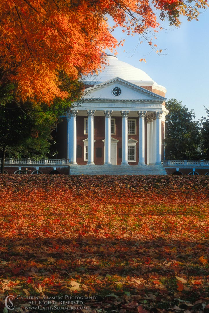 92_1760: autumn, rotunda, University of Virginia, UVA