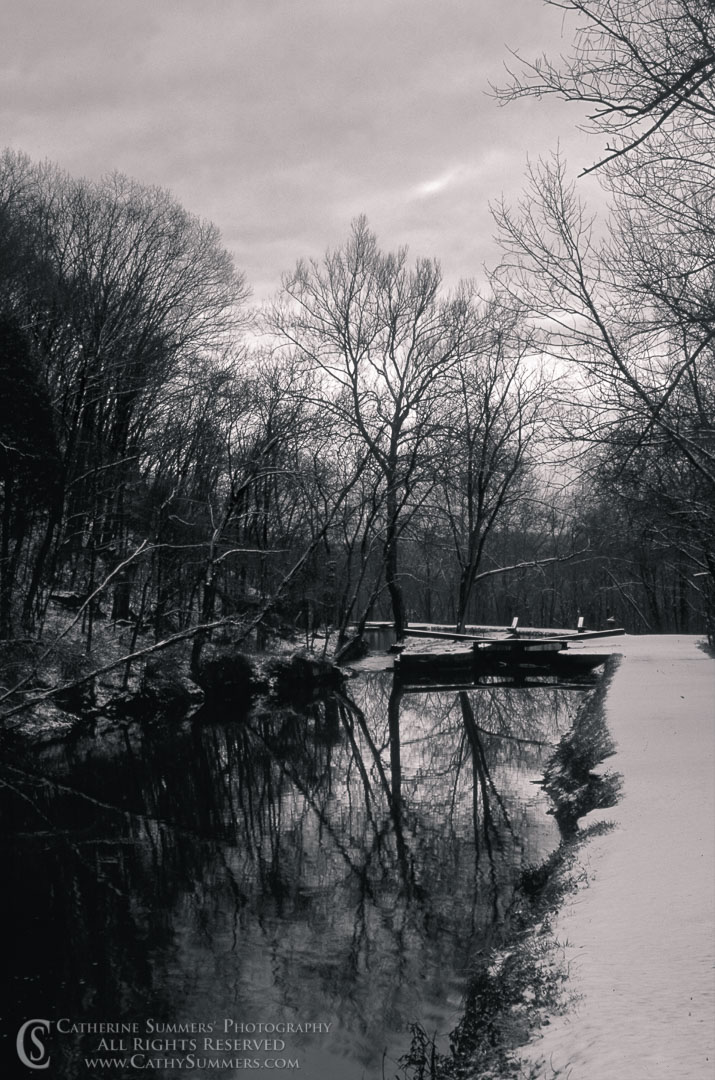 93_0101_BW: vertical, DC, Washington, reflection, C&O Canal, Winter, black and white