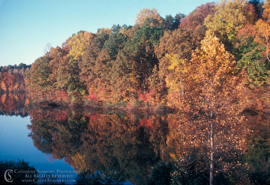 AR_1978_01: Autumn Morning Reflection in Lake Albemarle