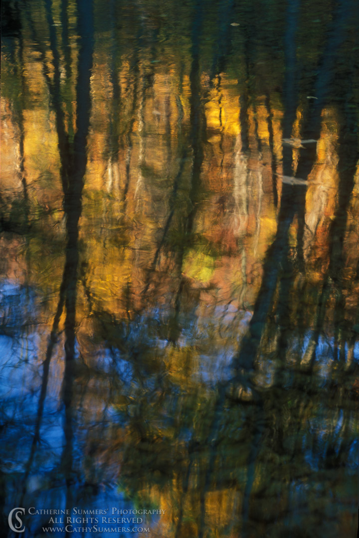 AR_1999_001: Rose River: Autumn Reflections #1