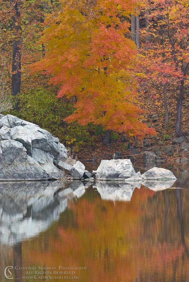 Autumn Morning Reflections in C&O Canal, #2