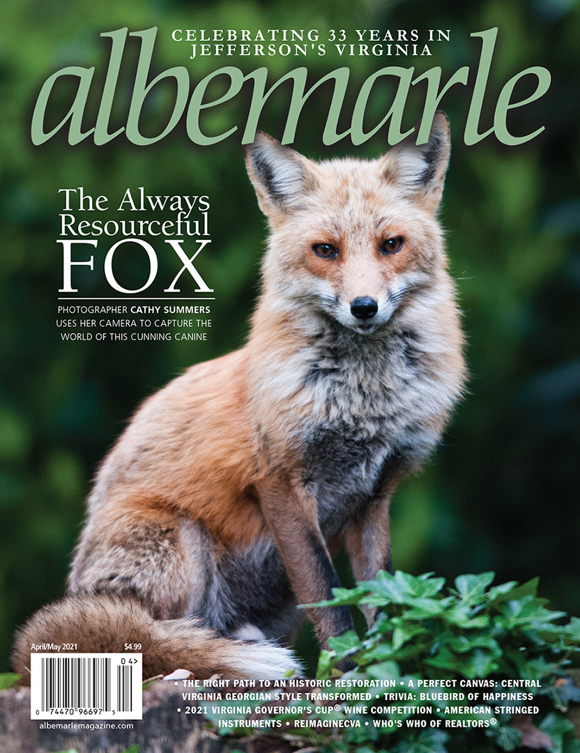fox, magazine cover