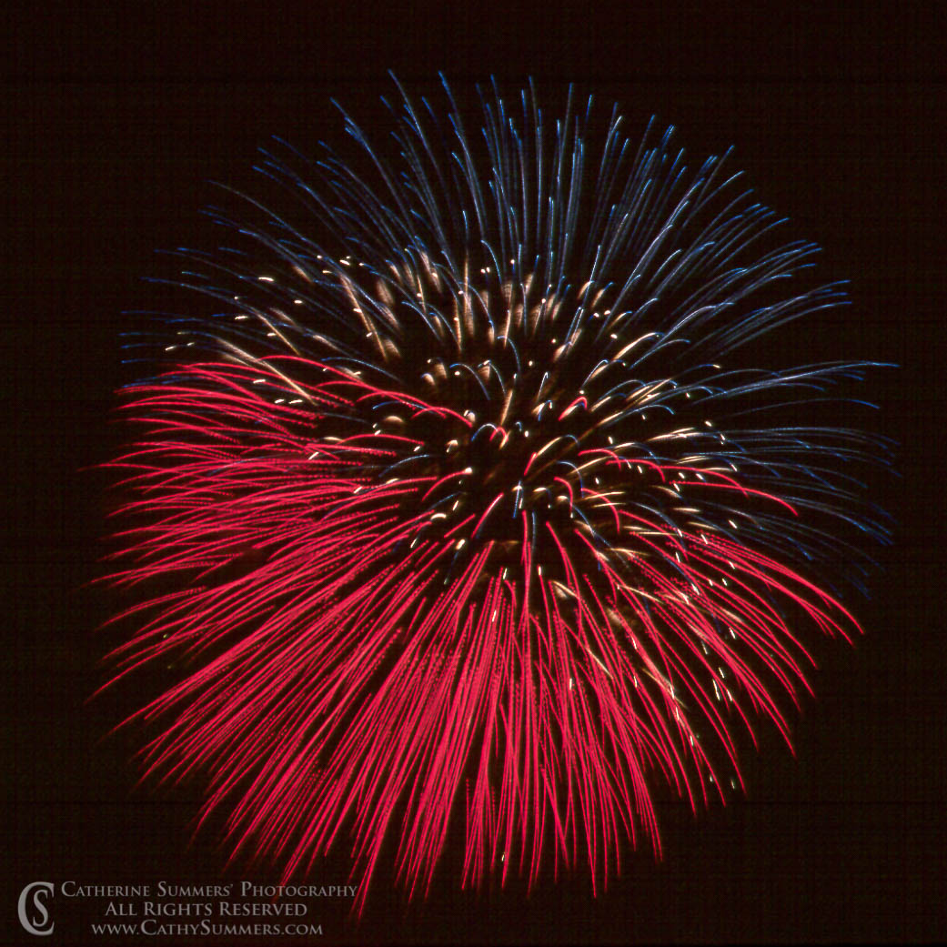Fireworks: Red, white and Blue