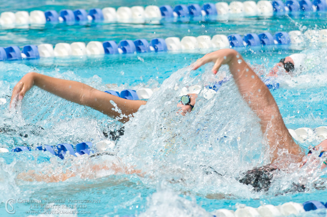 Backstroke Race #2