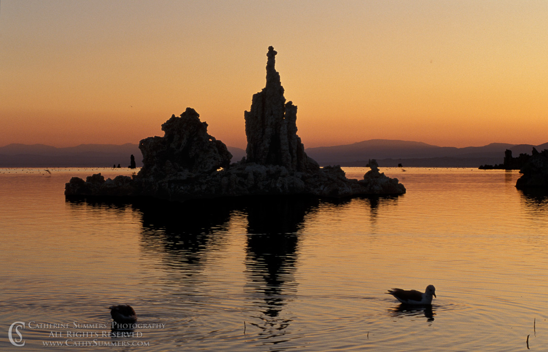YNP_0102: Mono Lake Tuffa Towers at Dawn